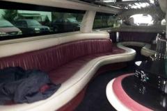 Utah wedding limo - Divine Limousine interior 2