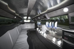 Utah wedding limo - Divine Limousine interior