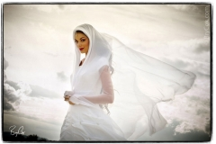 Salt Lake City Utah Wedding Photographer Bry Cox Photography