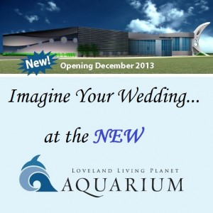 Utah weddings reception center Loveland Living Planet Aquarium