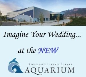 Utah wedding reception venue Loveland Living Planet Aquarium