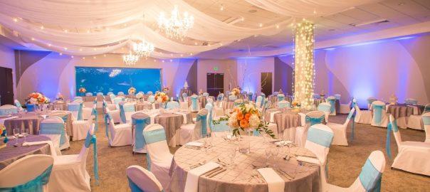 Utah weddings reception venue Loveland Living Planet Aquarium