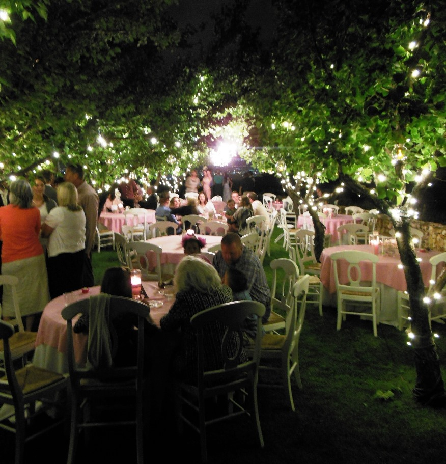 Eight Wedding Venues Everything From Clic Elegance To Down Home Rustic Charm